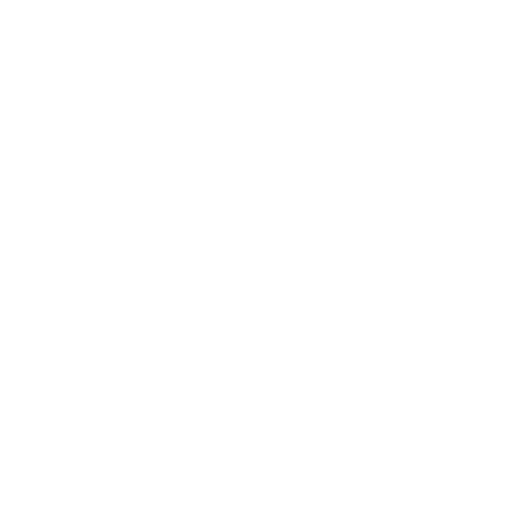 Kochs International logo